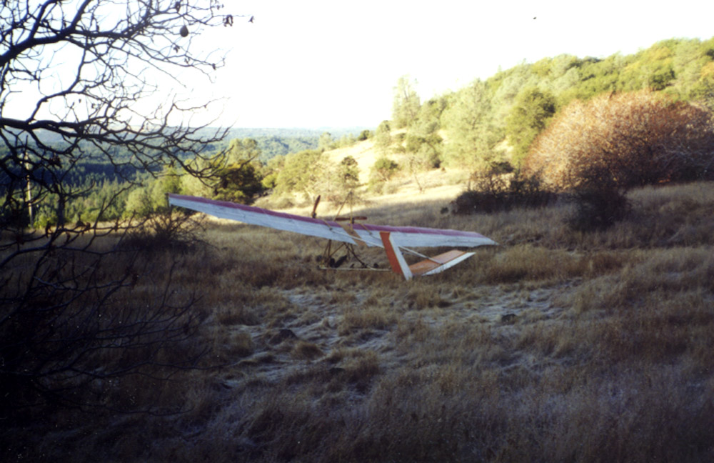 Hummingbird Crash Site from Left Rear